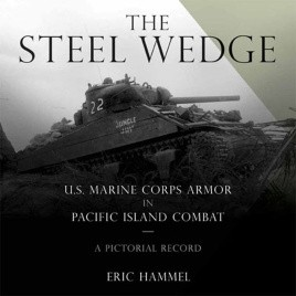 The Steel Wedge