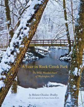 A Year in Rock Creek Park